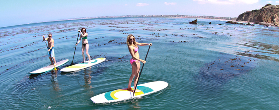 Paddleboarding Lessons / Tours